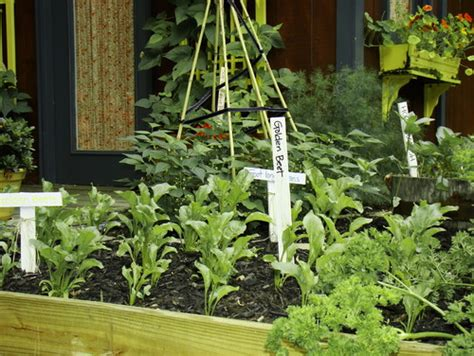 Get A Jump On A Cool Season Vegetable Garden Lecy Cool Vegetable Gardens