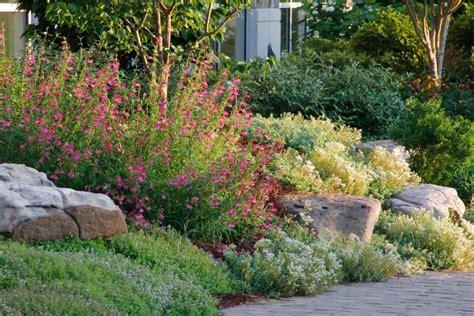 create  rock garden tips  success hgtv