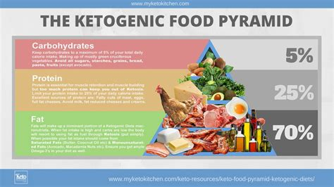 the keto paleo kitchen the easy way to shift your diet ratios for term weight loss books keto food pyramid for ketogenic diets infographic my