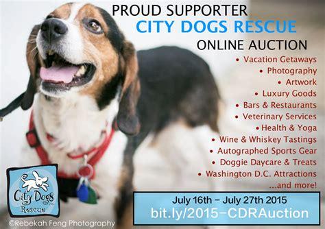 city dogs dc city dogs rescue dc auction 9pm studios