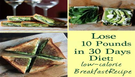 Shed 30 In 30 Days Diet by Lose 10 Pounds In 30 Days Diet Low Calorie Breakfast Recipe Project Next