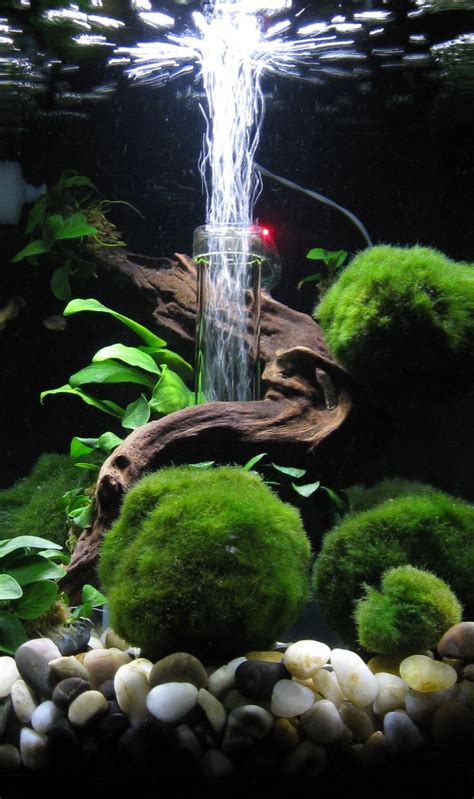 decoration aquarium maison decoration aquarium maison amazing meuble aquarium with