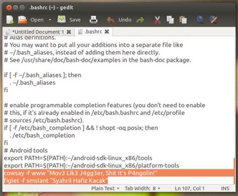 tutorial install wordpress di ubuntu tutorial cantikkan terminal di ubuntu anda dengan welcome