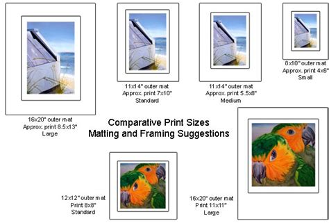 Standard Mat Sizes For Framing by Which Size Print Might Be Best For Your Needs Standard