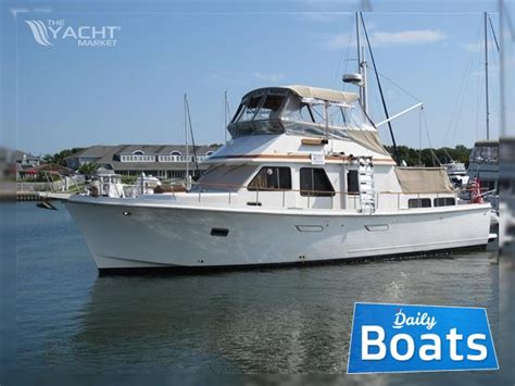 marine trader boat reviews marine trader for sale daily boats buy review price
