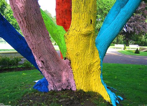 colorful tree colorful tree wallpaper 23252 open walls