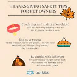 8 Safety Tips For by 8 Thanksgiving Safety Tips For Pet Owners Barkibu Es