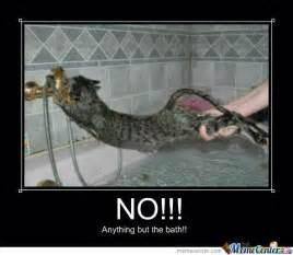 Bath Meme - cat vs bath by jester10 meme center