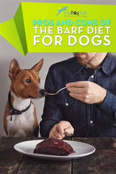 barf diet for dogs pros and cons of the barf diet for dogs top tips