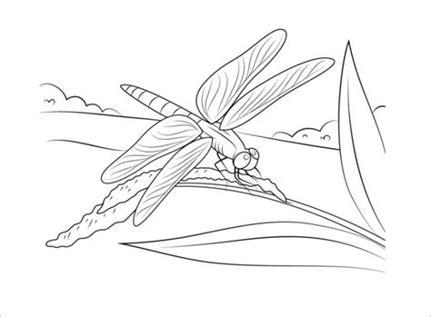 dragonfly template free 18 dragonfly templates crafts colouring pages free