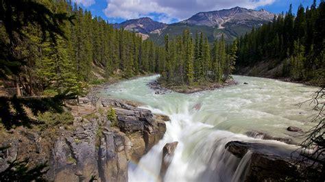 Sunwapta Falls | sunwapta falls in jasper alberta expedia