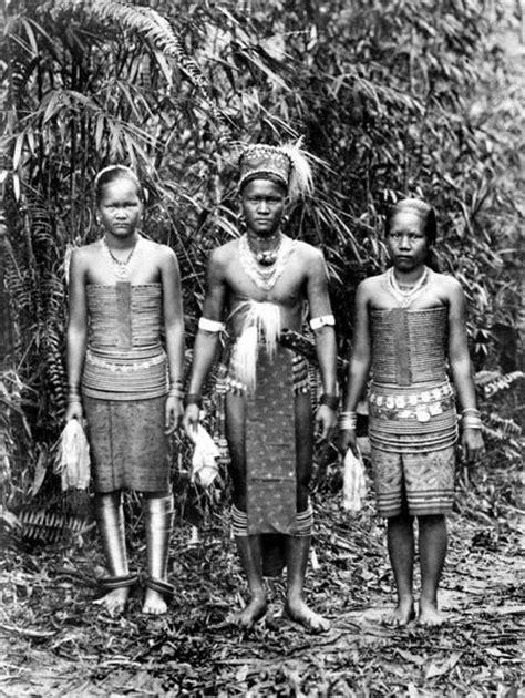 dayak bidayuh tattoo borneo dayak kucing berjanggut malayo polynesian people