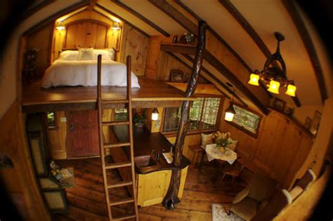 Luxury Bunk Beds For Adults by Pete Nelson A Treehouse Building Addict Pro And His