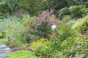 Flowers Vienna Va - native plants in northern va benefits of natural landscaping
