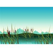 Free Swamp Vector Illustration  Download Art