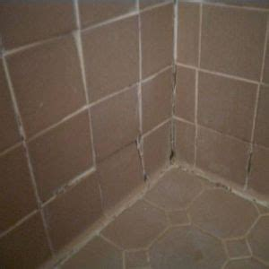 black mold on walls in bathroom how to remove black mold from shower walls with pictures