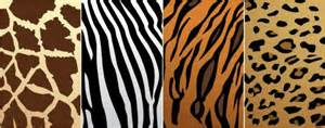 what color is a zebra zebra print designs stuffed animals coffee mugs and