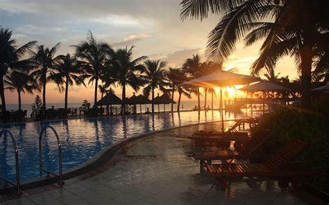 sunset tropical sunlight palm trees swimming pools