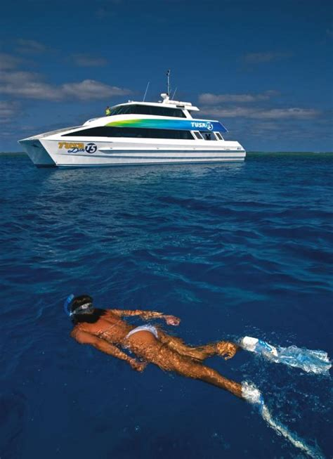dive great barrier reef great barrier reef day trips day tours