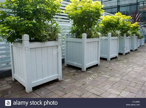 Painted Wooden Planters by Row Of Square Wooden White Painted Planters With Green