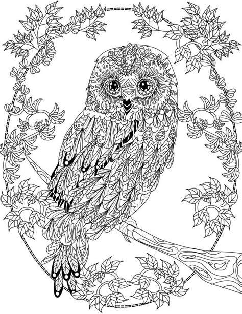 coloring pages for adults owl coloring pages for adults free detailed owl coloring