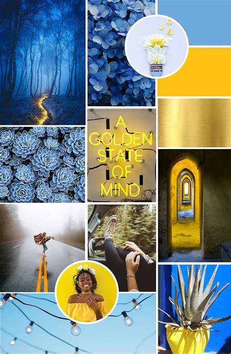 pathfinder coaching branding mood board yellow  blue