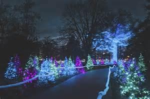 Botanical Garden Glow Garden Glow Missouri Botanical Garden Tours St Louis News And Events