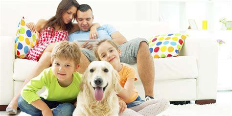 E Para Adocao From The Adoptable Pets Photo Pool by 10 Raz 245 Es Para Sua Fam 237 Lia Ter Um Pet Pet Shop