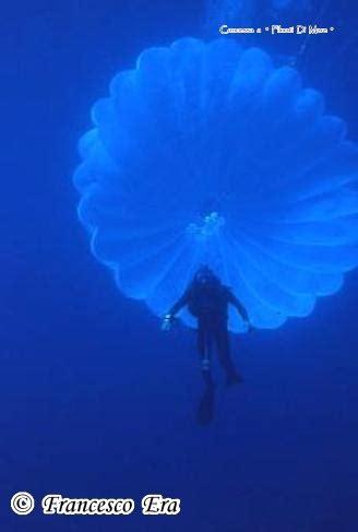 iperbarica cosa serve il corallaro ed il paracadute sub francesco era emozioni