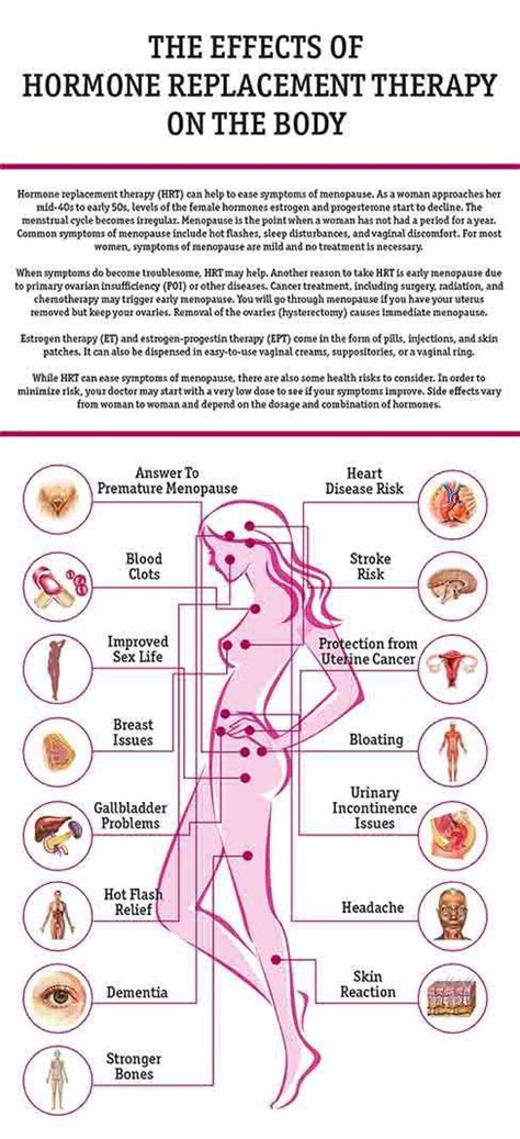 feminization male to female body transitions female hormones 25 best ideas about effects of testosterone on pinterest