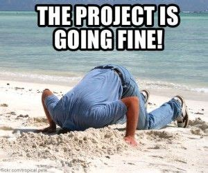 Project Manager Meme - 18 best images about pm humor on pinterest digital