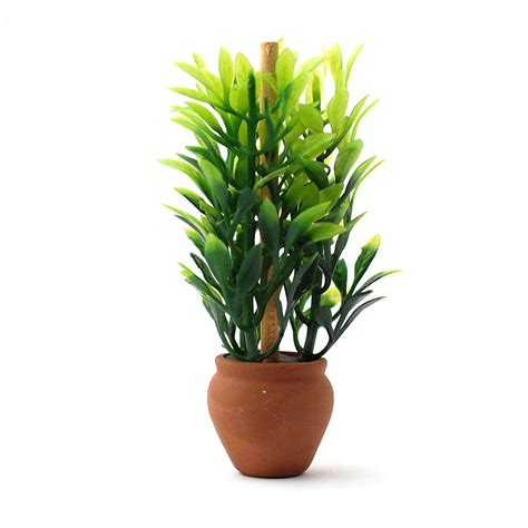 plant pots for sale retford terracotta lacquered plant e4659 plant in terracotta pot minimum world