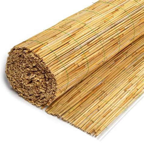 Reed Matting by Tuinch Reed Fence 8 Mm 180 X 600 Cm Tuinch