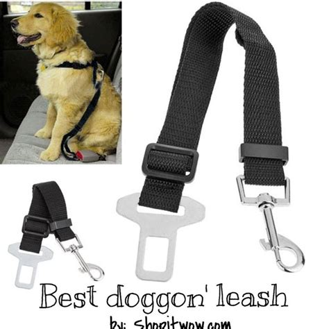 puppy seat belt 25 best ideas about car seats on seat puppy car seat and car