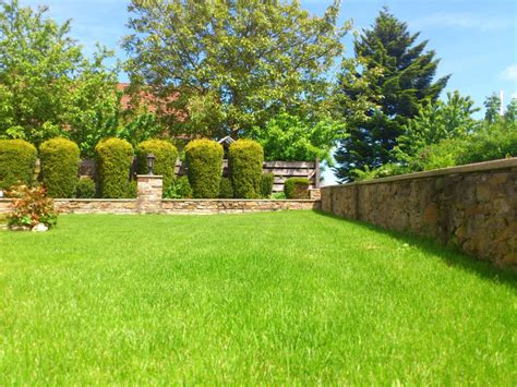 images grass plant meadow home walkway summer