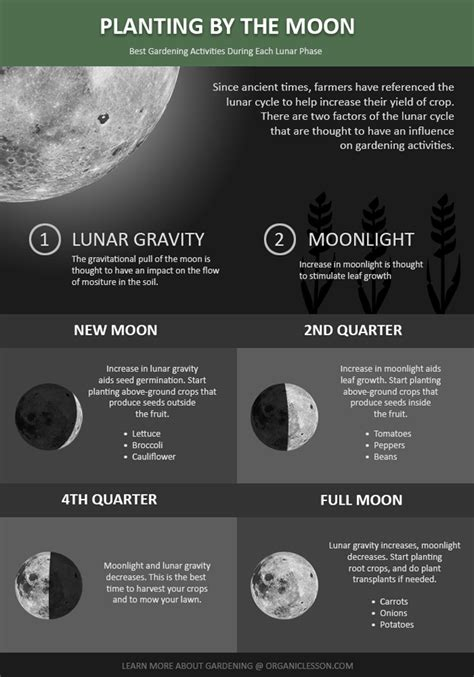 Gardening By The Moon about planting by the moon