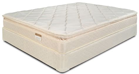 pillow top bed pillow top mattress the benefits you can get bee home plan home decoration ideas