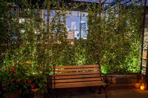 Backyard Bowls Nyc Rooftop Bars Nyc Views Best Hotels Pools Restaurants