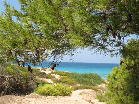 salento turisti per caso paesaggio salentino viaggi vacanze e turismo turisti