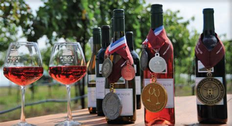 Knob Hill Winery by Pilot Knob Vineyard Winery Wins 3 Medals In Its Debut