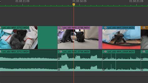 final cut pro zoom cursor 26 профессиональных советов для быстрого монтажа в
