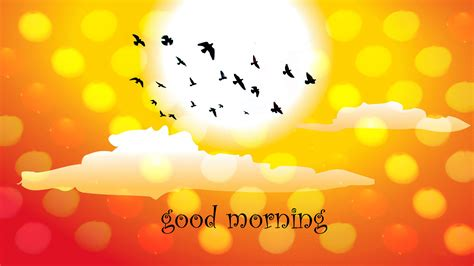wallpaper hd good morning best good morning hd wallpapers hd wallpapers images