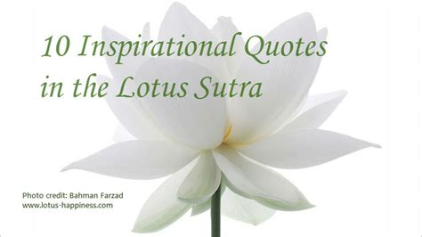 10 inspirational quotes in the lotus part 1