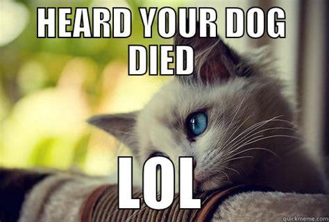 Awww Meme - dead dog quickmeme