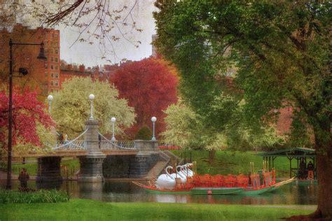 swan boats in the boston public garden swan boats in the lagoon boston public garden photograph