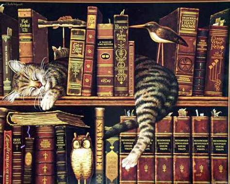 Cat And Books cats owl book library books wallpaper 642212