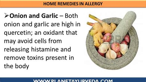 allergies treatment seasonal allergy treatment with home remedies