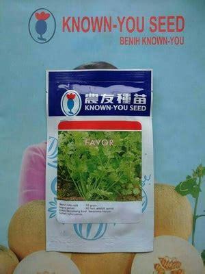Jual Benih Daun Ketumbar jual bibit corriander daun ketumbar favor 10 gram dadi