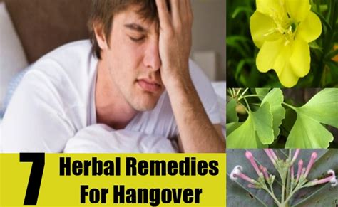Home Remedies For Hangover by 7 Herbal Remedies To Eat Your Way Out Of A Hangover Usa