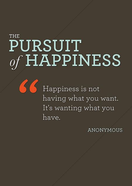 The Pursuit Of Happiness quotes about pursuit of happiness sualci quotes